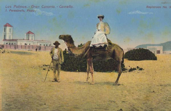 Dama en camello