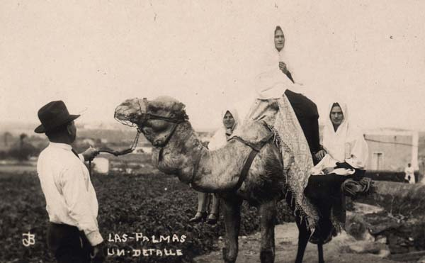 Mantillas y camellos